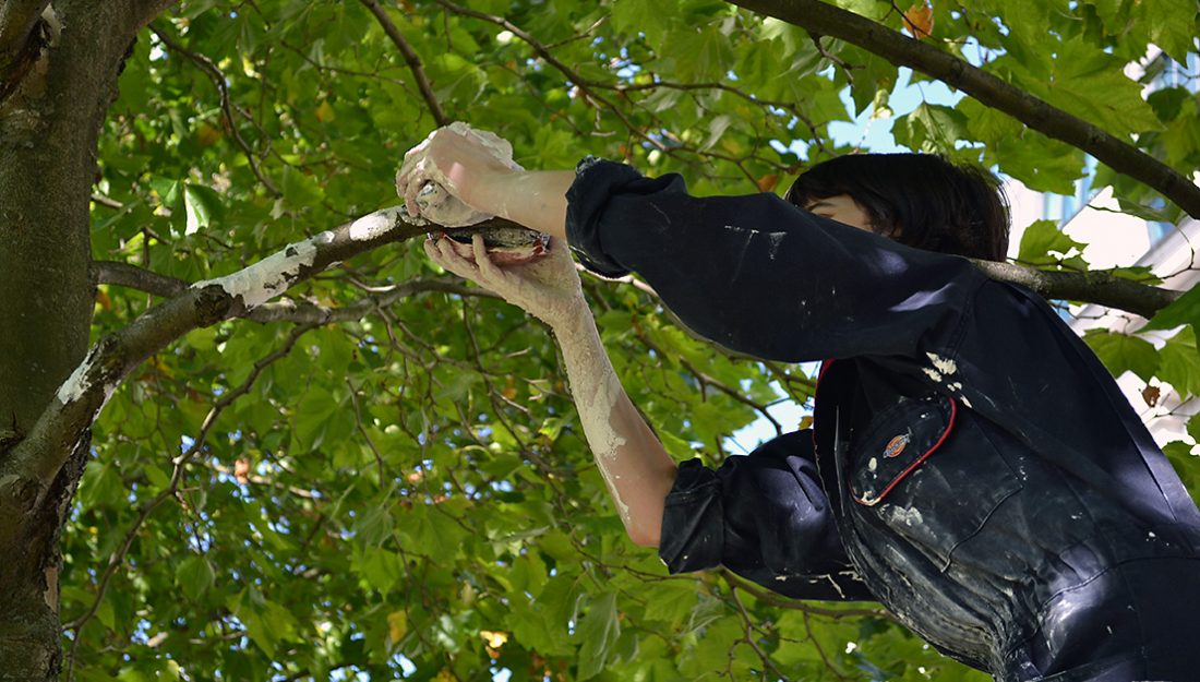 The artist places her pieces on a branch in the tree.